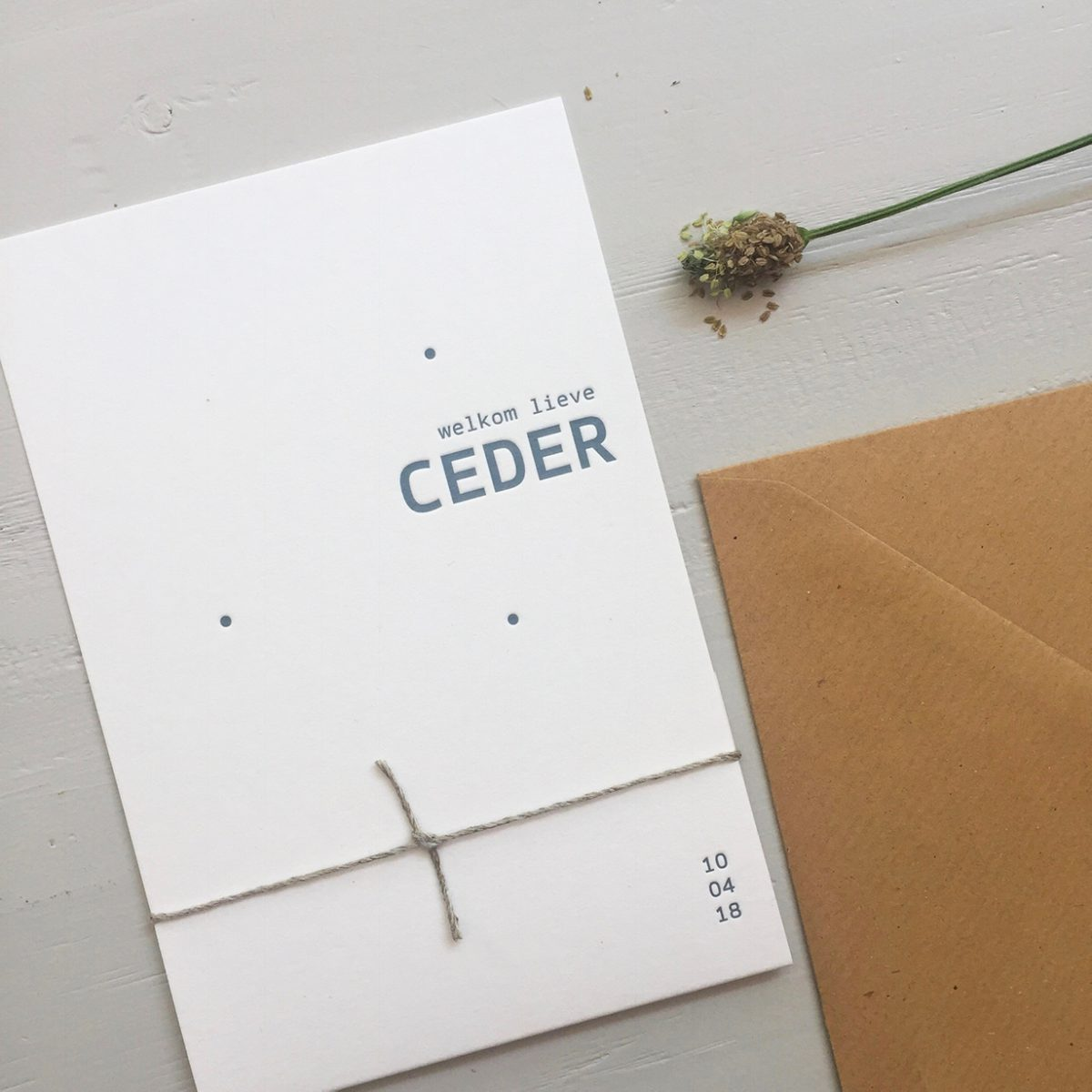 Letterpress geboortekaartje Ceder | Studio Moose