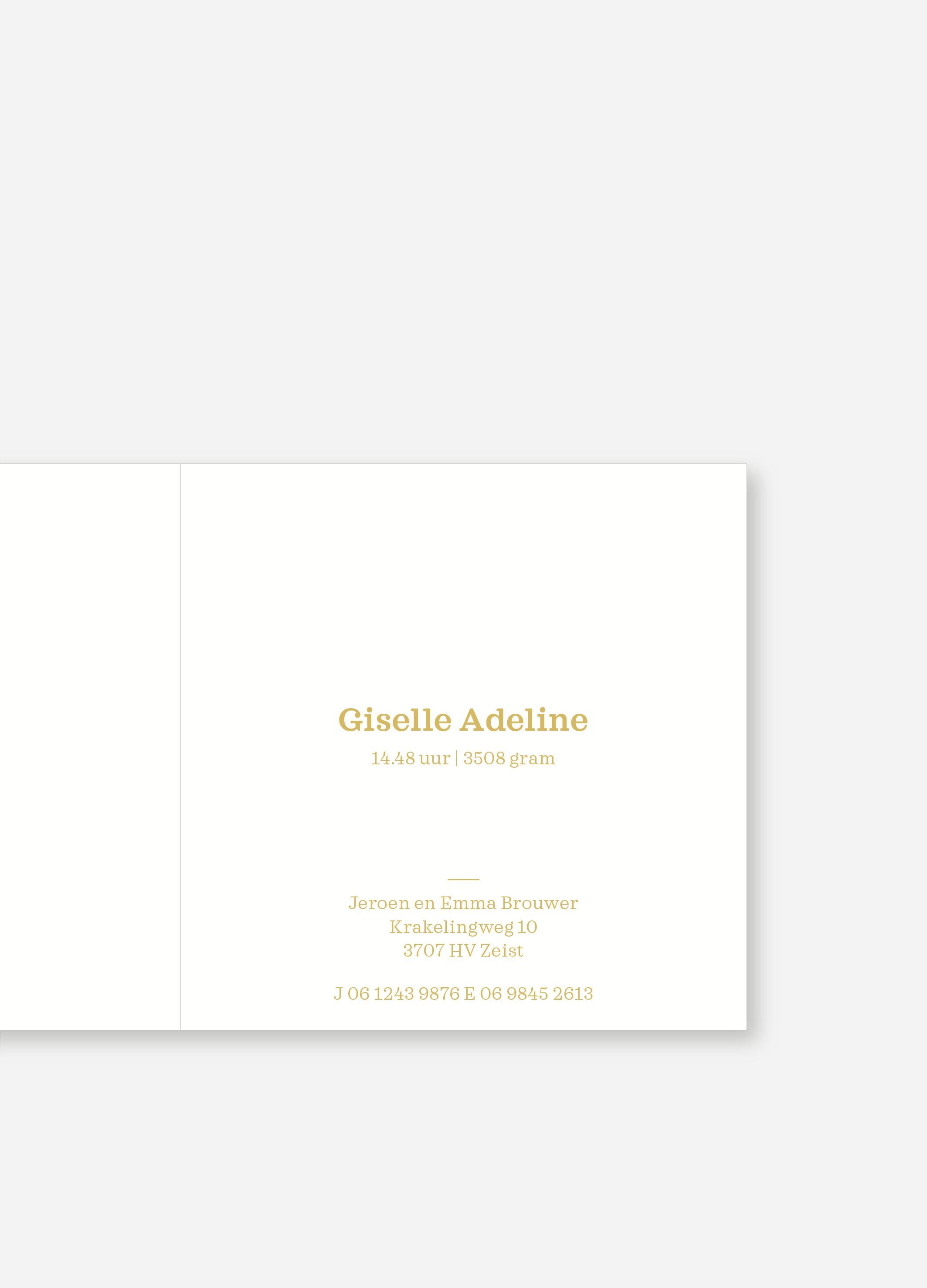 Geboortekaartje Giselle | Studio Moose