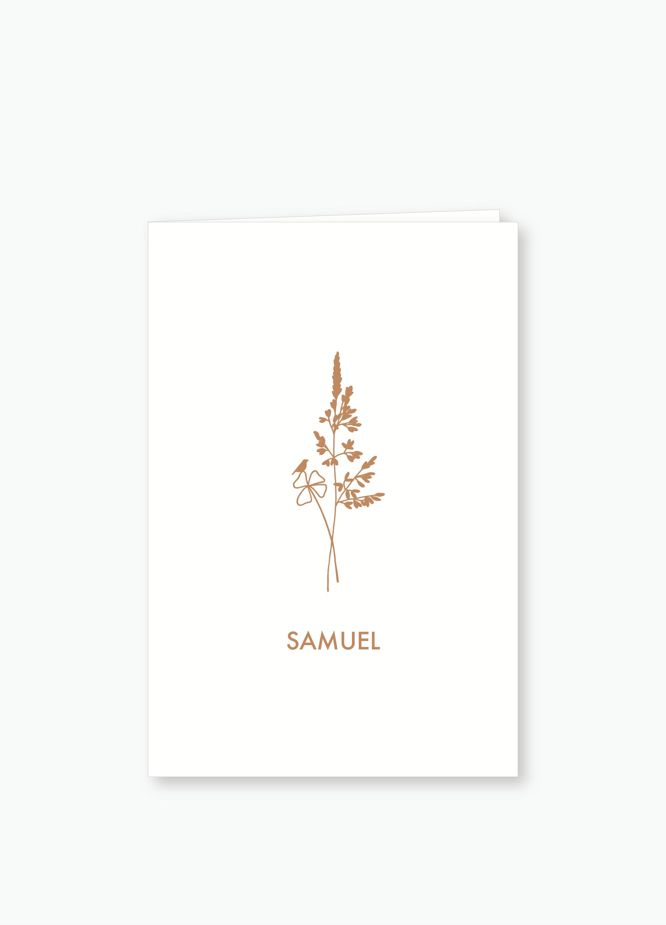 Geboortekaartje Samuel | Studio Moose