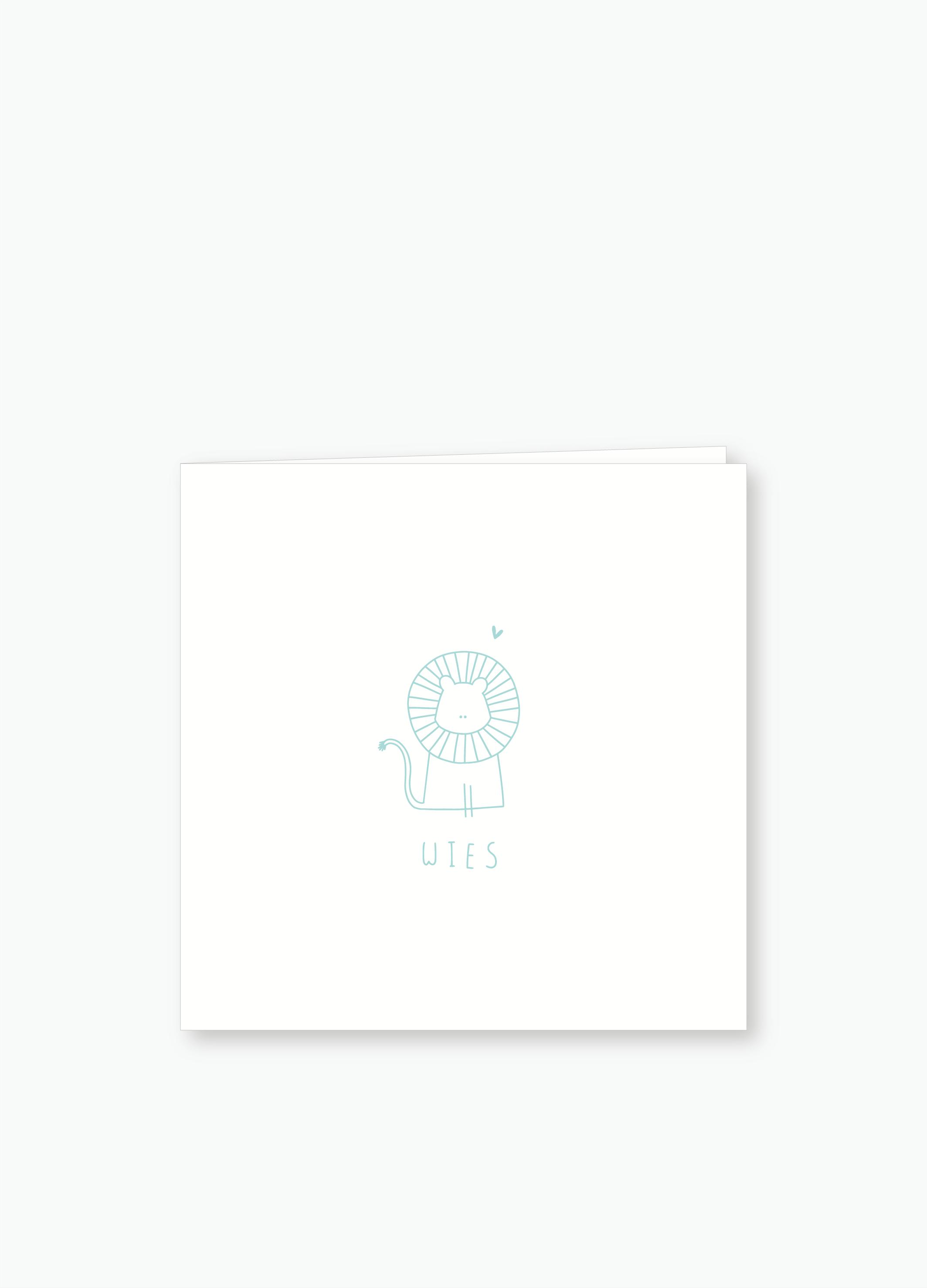 Geboortekaartje Wies | Studio Moose