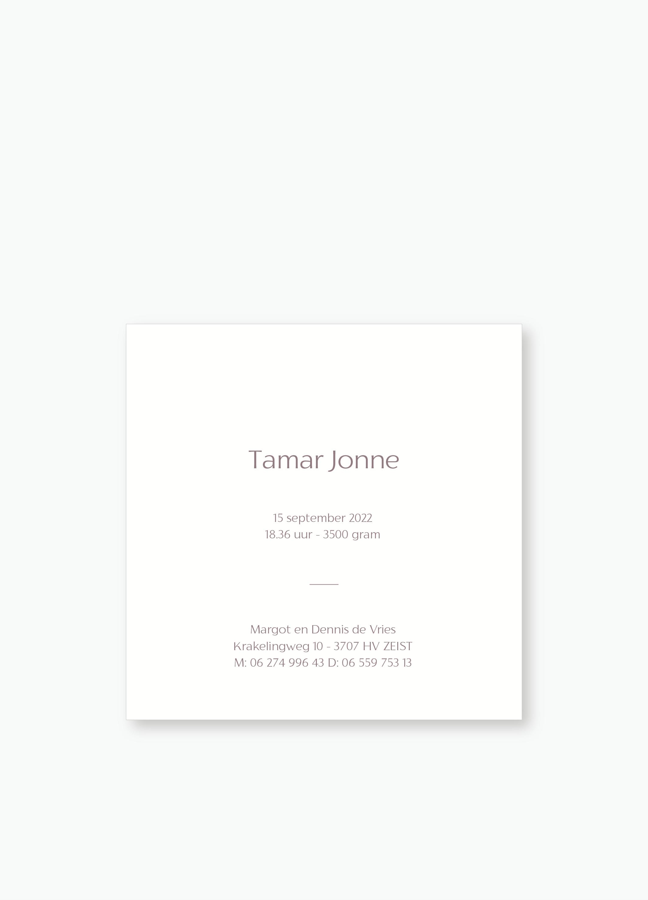 Geboortekaartje Tamar   Studio Moose